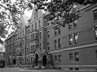 7 интересных интервью с преподавателями Гарварда