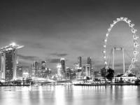 Молодых учёных приглашают на обучение и стажировку в Сингапур