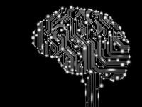 IBM тестирует алгоритмы, имитирующие работу человеческого мозга