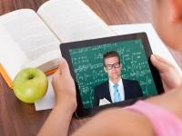 Образовательная онлайн-платформа edX выпустила 60 бесплатных летних курсов