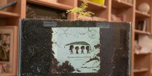 В Аргентине выпустили детскую книгу, из которой можно вырастить настоящее дерево