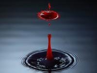 Учёные изобрели спрей-пену, которая мгновенно останавливает кровотечение