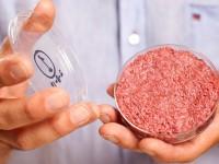 Учёные придумали, как удешевить искусственное мясо и придать ему вкус