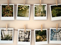 40+ бесплатных фотостоков для блогеров и не только
