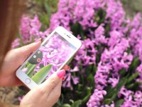 10+ приложений для обработки фото и видео на iPhone