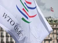 Що означає угода СОТ про безмитну торгівлю ІТ-гаджетами