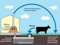 Закарпатский изобретатель создал биогазовую бытовую установку себестоимостью в $2 тыс.