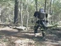 Видео: Будущее роботостроения — гуманоидные роботы от Boston Dynamics