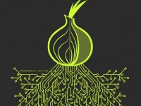 В MIT нашли новую уязвимость в файлообменной сети Tor