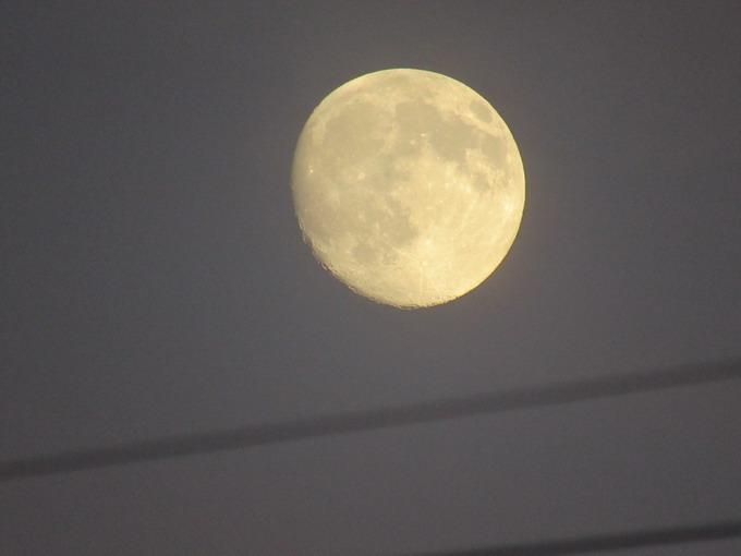 Фото Луны, сделанное при 50-кратном приближении