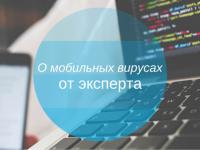 Дэвид Эмм, антивирусный эксперт: «Почти 50% заражений в Украине происходит через USB-накопители»
