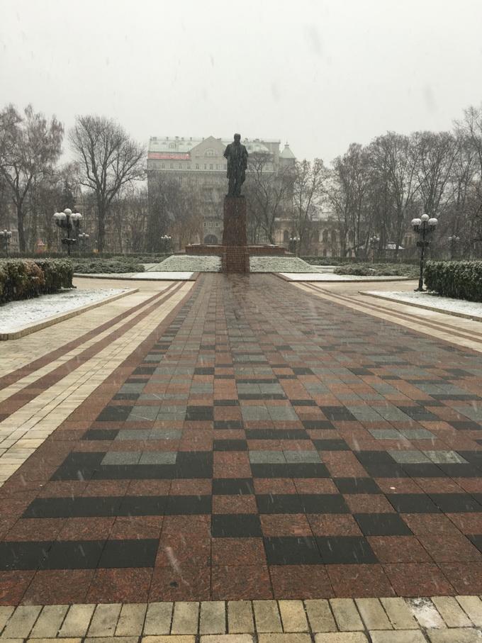 Фото, сделанное с помощью основной камеры iPhone 6s днем, в пасмурную погоду