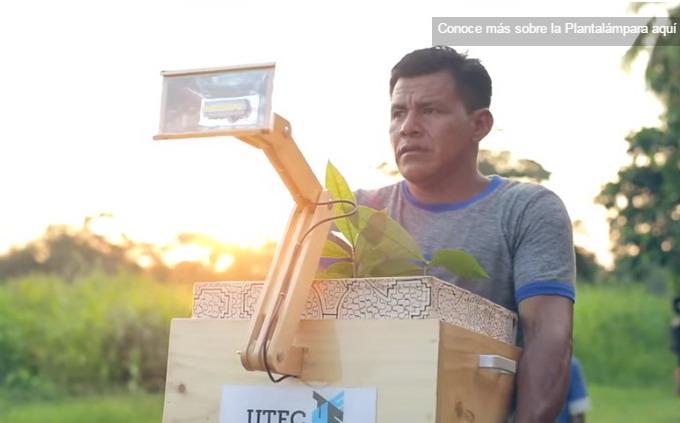 В университете Universidad de Ingeniería y Tecnología (UTEC), разработали лампу, которая работает за счет энергии растений