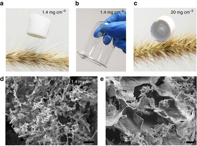 «Нанобумага» способна впитывать масляные жидкости как губка
