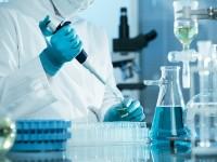 5 матеріалів про науку, які варто прочитати на вихідних