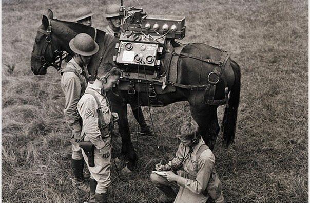 Телеком-конь: в армии США в 1940 году использовали лошадей для создания мобильного пункта радиосвязи