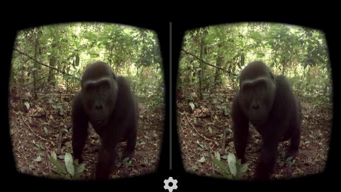 Погружение в виртуальную реальность стоит начать с просмотра сферического 3D-видео