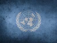 4 корисних сервіси від ООН для українських вимушених переселенців