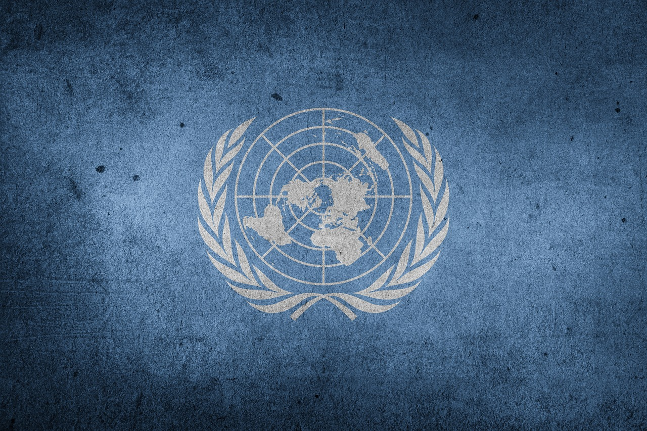 4 корисних сервіси для українських вимушених переселенців від ООН