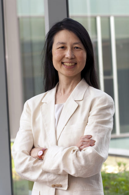 Jeannette Wing, a computer scientist at Microsoft Research, is developing a formally verified protocol for the internet.
