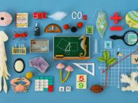 Нова математика — чи вдасться США оновити підхід до шкільної освіти
