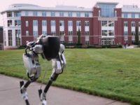 Біжи, робот, біжи — що вміє роботизований американський страус