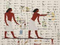 Війна за шифр — чи зможе штучний інтелект прочитати стародавні тексти