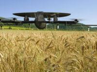 Kray Technologies — дрони, які відроджують українське фермерство