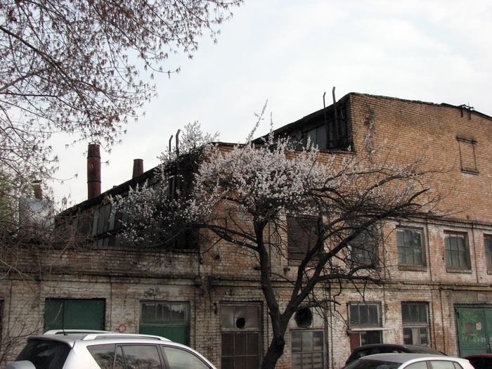 Нові споруди виглядають доволі незвично на фоні сірої і давно запустілої промзони