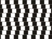 Чому наш мозок вірить в оптичні ілюзії — версія вчених