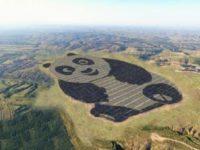 Китайська сонячна панда, як приклад маркетингу альтернативної енергетики