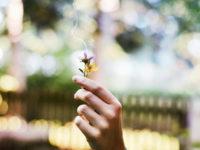 Нова технологія попереджає про викрадення даних запахом