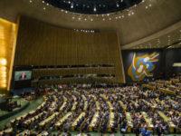 Повернути довіру і побороти шахрайство — ООН переходить на блокчейн
