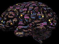 Наука прийняття рішень і стратегії вибору — що вивчає нейроекономіка