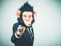 10 самых высокооплачиваемых работ гигономики — исследование Fit Small Business