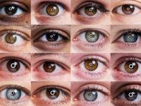 Американці дозволили AI-алгоритму діагностувати око без участі лікаря