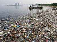 Наукові експерименти — шлях до вирішення екологічних проблем