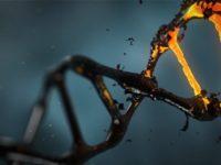 Чому витік генетичних даних гірший за витік фінансової інформації