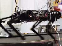 Жодної лабораторії без роботів — що створюють в MIT