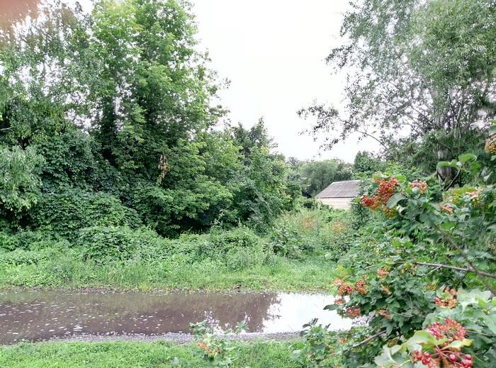 Приклад пейзажної зйомки основної камери GM8 Go