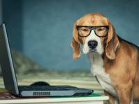 8 дополнительных методов заработка блогеров