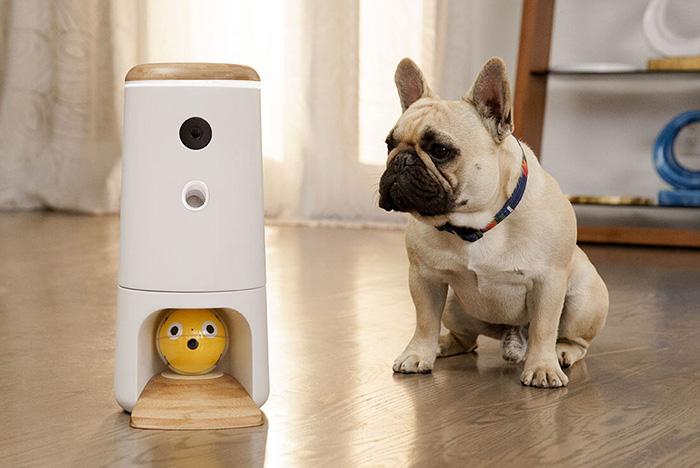Іграшка для домашніх тварин з штучним інтелектом. Відео