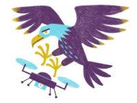 Чи буде війна між птахами та дронами?