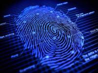 Нейромережа здатна генерувати фальшиві відбитки пальців