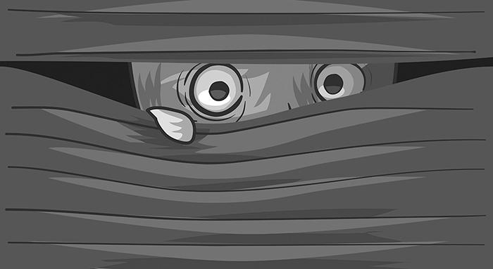 Як захистити свої дані? Нотатки параноїка