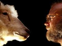 Ринок клонування тварин: як все влаштовано?